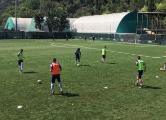 Sampdoria diretta