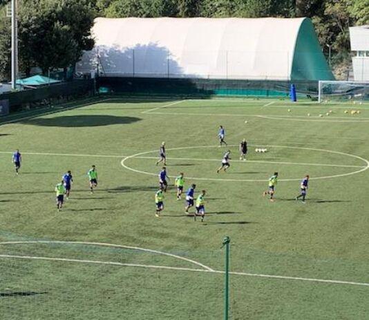 Calendario Berretti 2021 Settore Giovanile e Primavera Sampdoria   Samp News 24